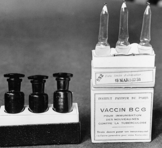 This March 1931 file photo shows ampules of the BCG vaccine against tuberculosis in a laboratory at the Institute Pasteur in Paris, France. Dec. 2, 1947 file photo. Scientists are dusting off some decades-old vaccines against TB and polio to see if they could provide stopgap protection against COVID-19 until a more precise shot arrives. File Photo: AP
