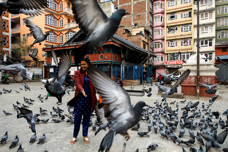 A woman reacts as pigeons take flight during the Nepali New Year as the lockdown continues for the twenty-first day amid concerns about the spread of the coronavirus disease (COVID-19), in Kathmandu, on Monday, April 13, 2020. Photo: Reuters