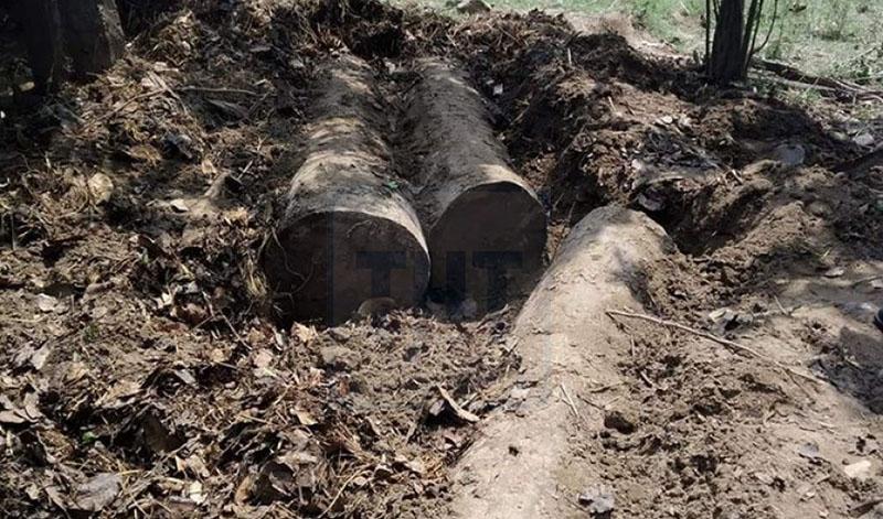 Trees felled by the wood smugglers. Photo: Tekendra Deuba/ THT