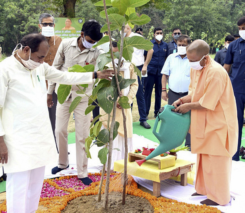 In this photo released by India's Uttar Pradesh state government, Uttar Pradesh Chief Minister, Yogi Adityanath, right, inaugurates a day long tree planting campaign across the state in Lucknow, India, Sunday, July 5, 2020. Photo: Uttar Pradesh state government via AP
