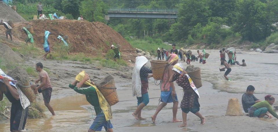 Labourers ferrying sand from the Trishuli River in wicker baskets on their backs, in Dhading, on Monday. Photo; THT