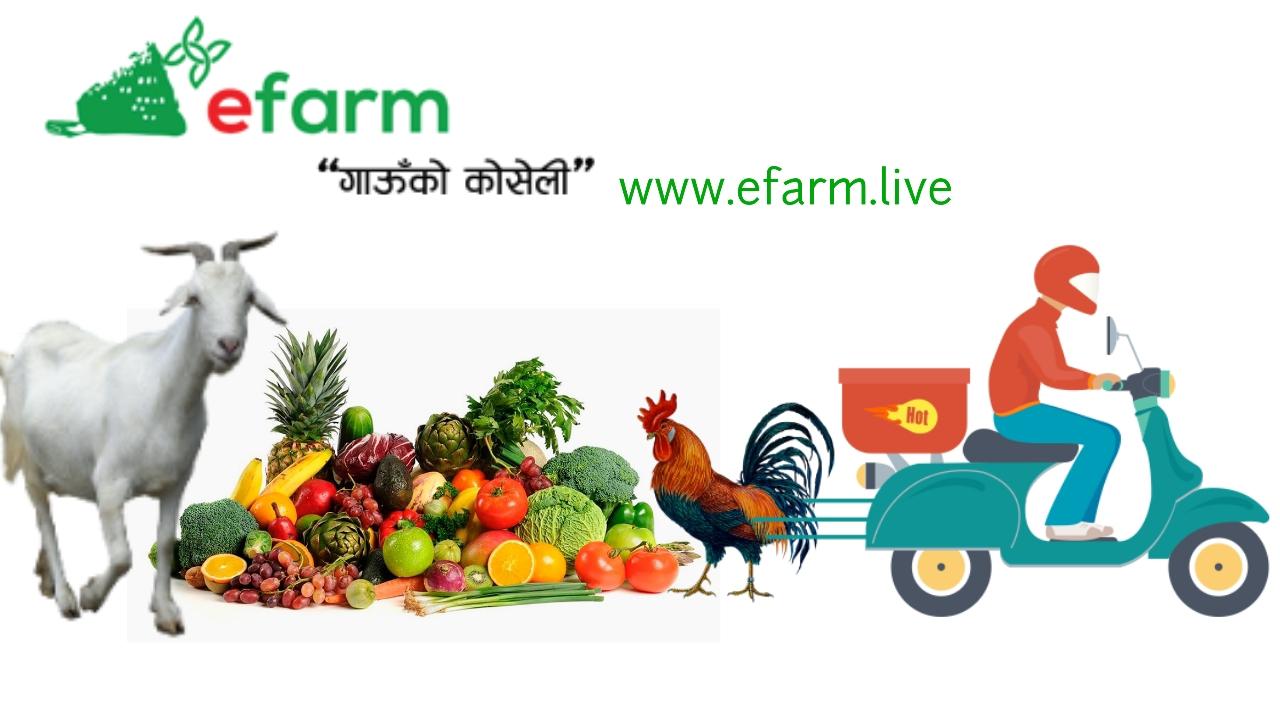 Photo Courtesy: E farm