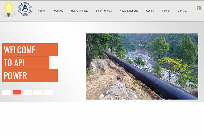 This image shows the website page of Api Power Co Ltd. Image: THT