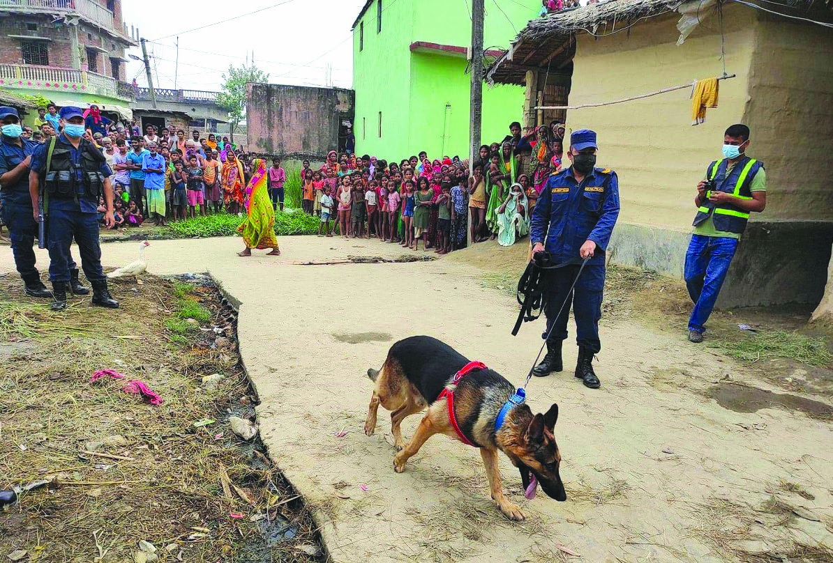 Security personnel employing a sniffer dog to aid in the investigation of the mysterious death of a teenage girl, in Durga Bhagwati Rural Municipality, Rautahat, on Thursday. Photo: THT